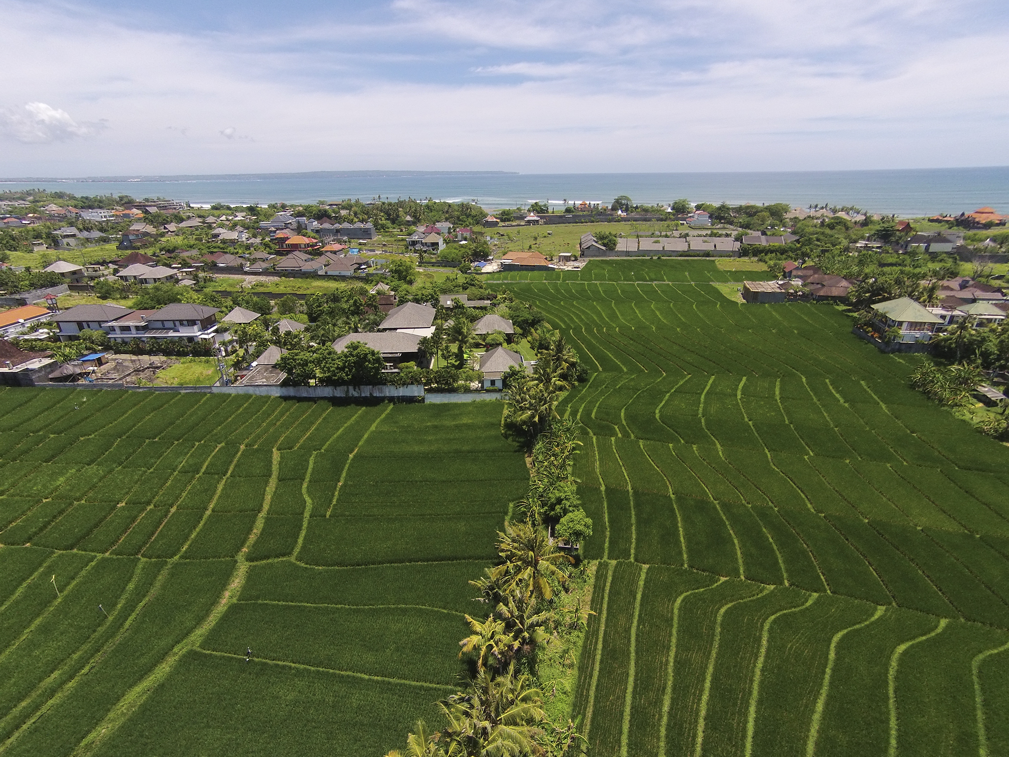 Bendega Rato - Ricefields and beachside<br /> - Bendega Rato, Canggu, Bali