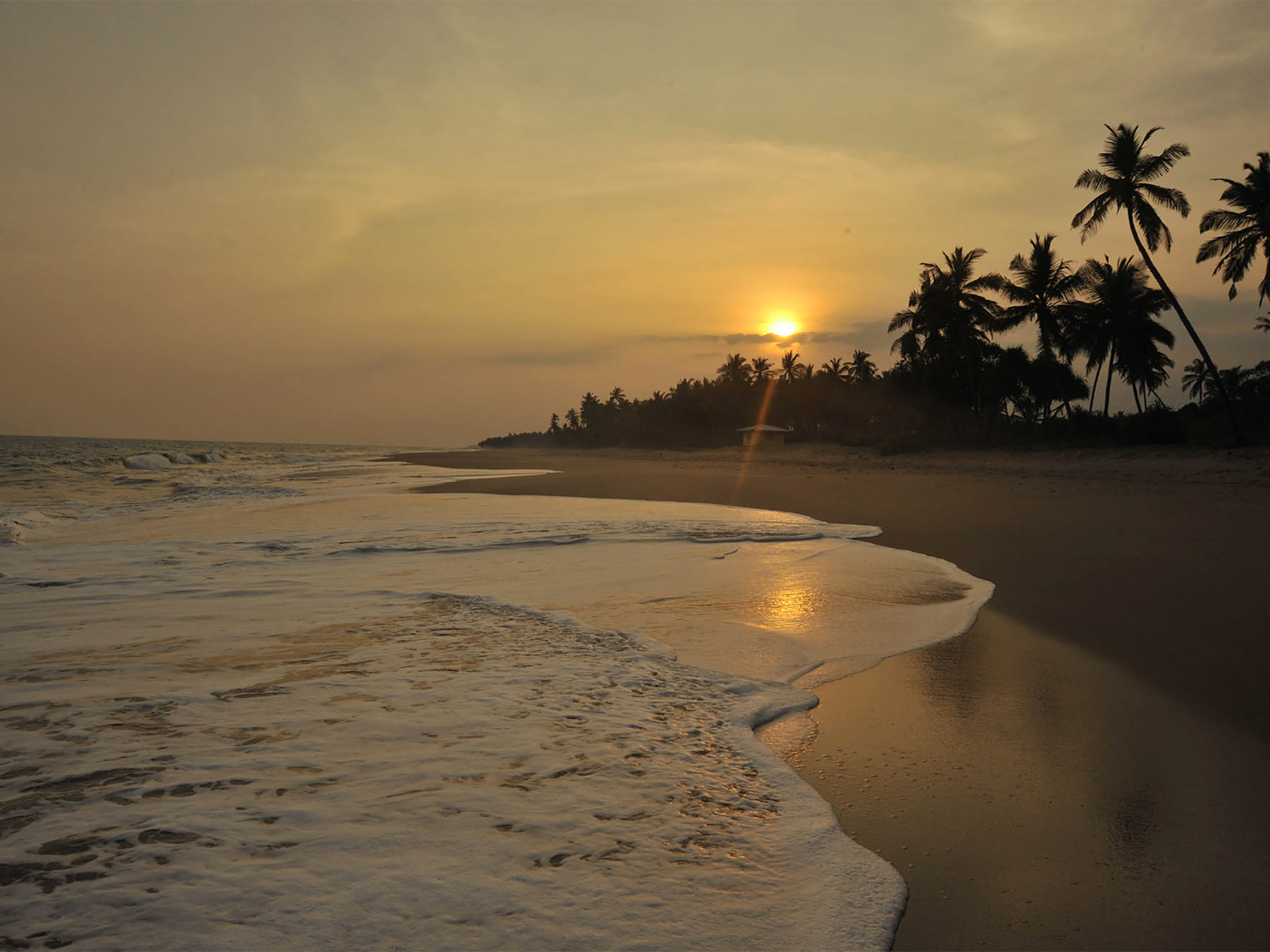 Oceans Edge - The beach at sunset - Ocean's Edge, Tangalle, South Coast