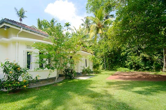Villa and Garden - Coconut Grove, Ahangama, South Coast