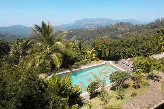 Pool and Plantations - Rangala House, Kandy Region, Hill Country