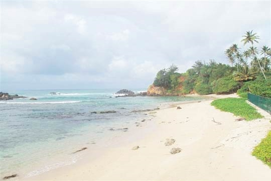 Beach - Indisch, Ahangama, South Coast