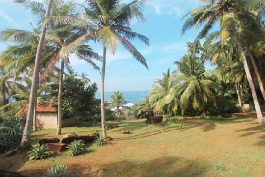 Garden and View - Wetakeiya House, Dickwella, South Coast